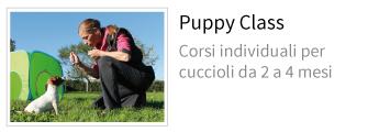 puppy class educazione cuccioli